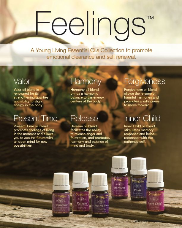 Young Living Collections – Dedicated Living